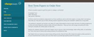 CheapEssaysOnline term paper